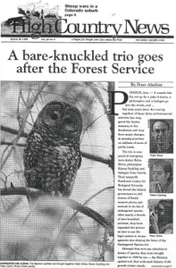 A bare-knuckled trio goes after the Forest Service