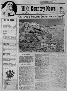 Oil shale future: Jewel or synfuel?