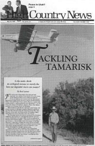 Tackling tamarisk