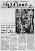 Pine beetles munch on, policies differ