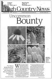 Uncommon Bounty