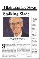 Stalking Slade