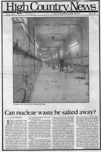 Can nuclear waste be salted away?