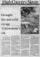 Drought, fire and cold ravage Yellowstone's elk
