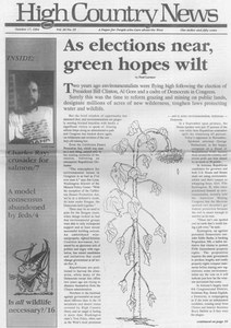 As elections near, green hopes wilt