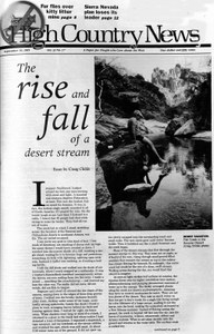 The rise and fall of a desert stream