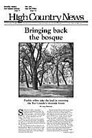 Bringing back the bosque