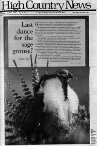 Last dance for the sage grouse?