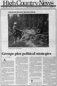 Groups plot political strategies for ancient forest protection