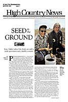 Seed in the ground