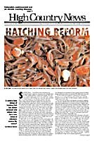 Hatching reform
