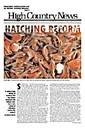 Hatching reform