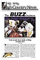 The buzz business