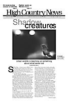 Shadow Creatures