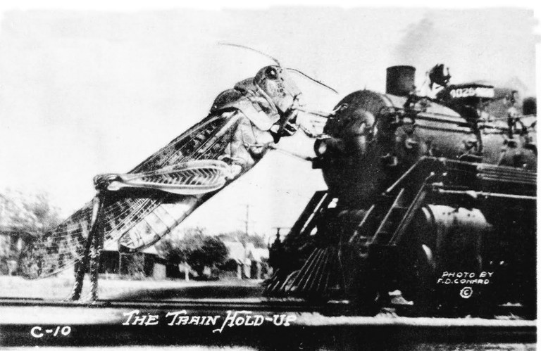 The death of the Super Hopper — High Country News