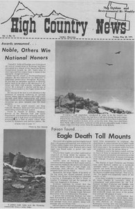 Eagle death toll mounts ... poison found