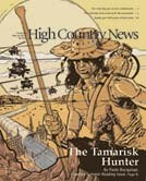The Tamarisk Hunter