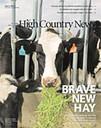 Brave New Hay