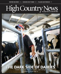 The dark side of dairies