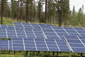 Solar salvation?