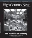 The Half-life of Memory