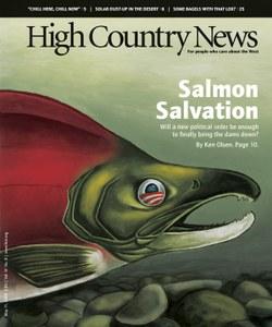 Salmon Salvation