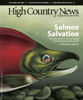 Salmon Salvation