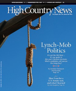 Lynch-Mob Politics