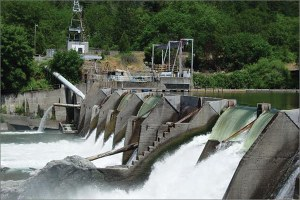 Dam removal for dummies