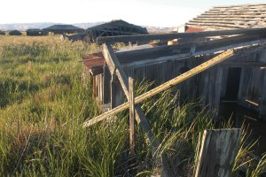 A visit to a ghost town in San Francisco Bay