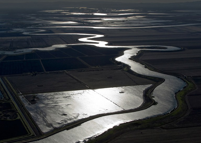 Sacramento and San Joaquin Delta, looking south from above Black Tract, November 2006.