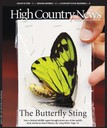 The Butterfly Sting