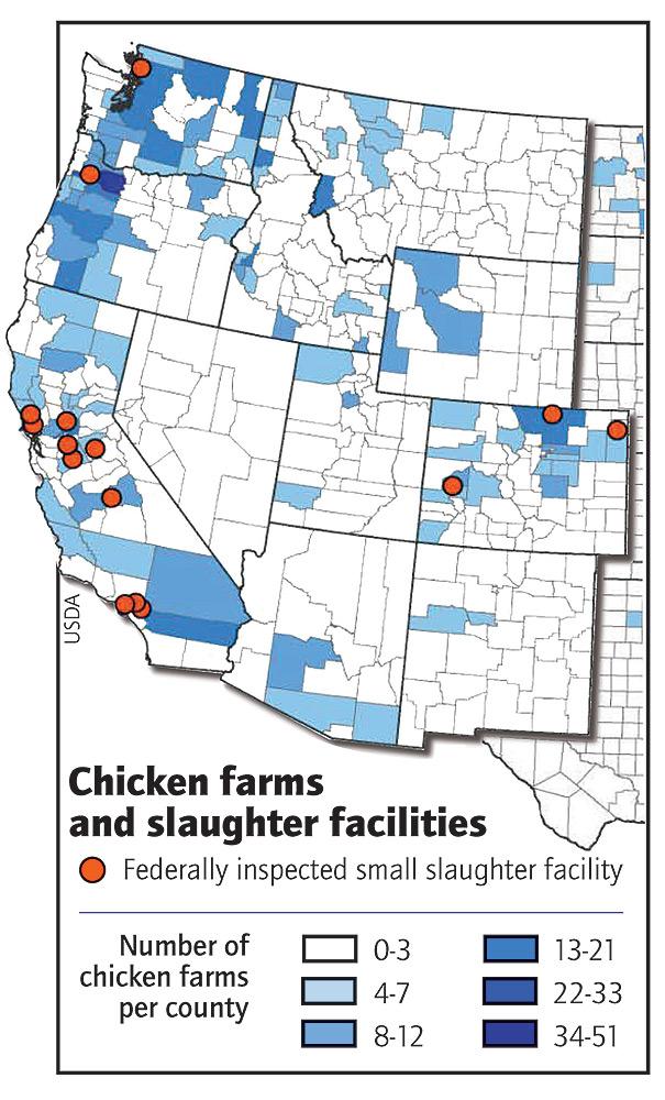 poultry farm place essay