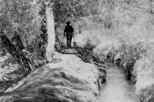 Spring-cleaning the acequia: A photo essay