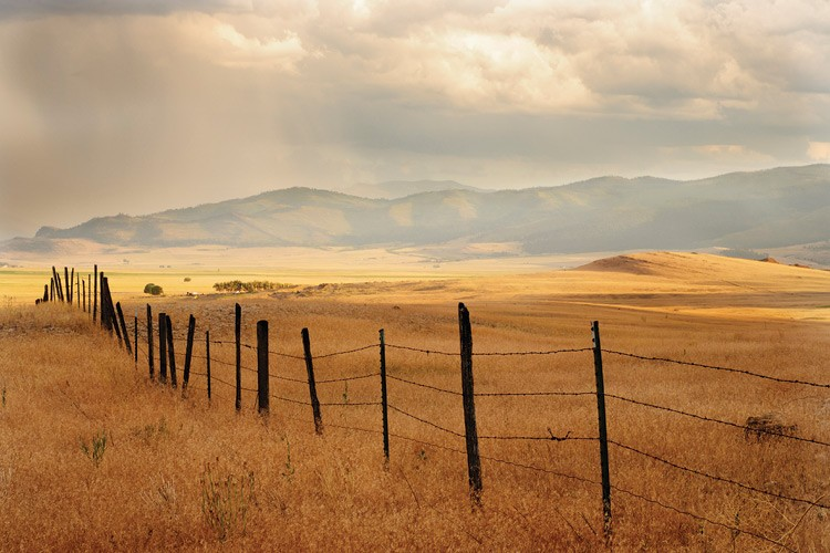 An old barbed-wire fence marks off some Montana farmland.