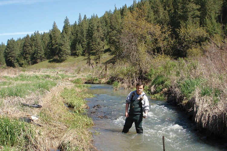 Ricardo Sánchez-Murillo at work in the West Fork Little Bear Creek, where steelhead populations are thriving, despite polluted water.