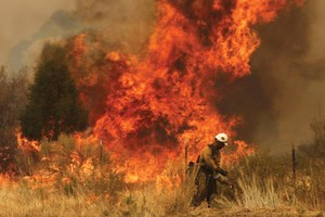 Wildfires burn big in Arizona and New Mexico