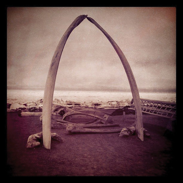A whalebone arch near the Arctic Ocean beachfront.