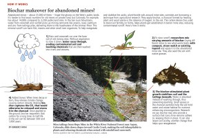 Biochar makeover for abandoned mines?