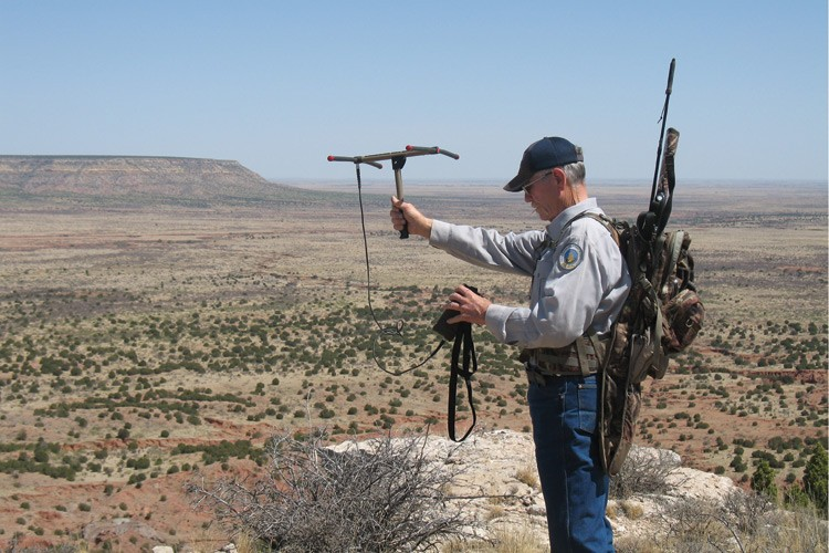 From a high point in the Quay Valley earlier this summer, Ron Jones uses a receiver to check four traps he had set.