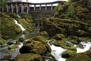 Rebuilding a river as Washington's Elwha dams come down