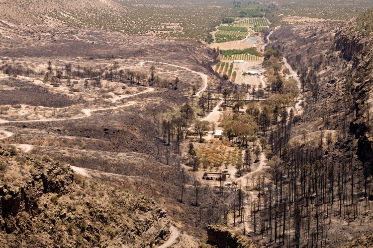 By the time New Mexico's Las Conchas Fire was contained in early August, it had burned more than 156,000 acres, including this area near Dixon's Apple Orchard at the mouth of Cochiti Canyon.