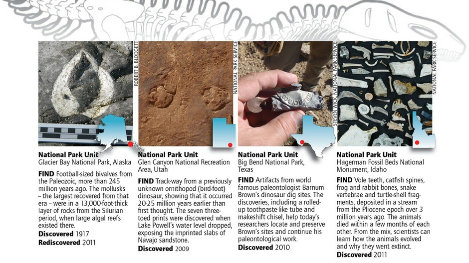 In national parks, where are all the fossils?