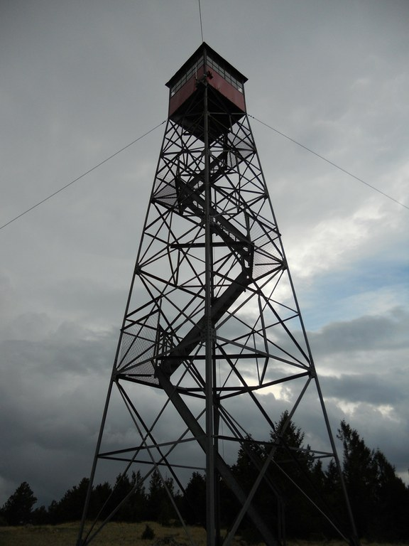 Connors' tower looks out over the Gila National Forest.  It is one of just a few hundred such towers in the U.S. that are still staffed. There used to be thousands.