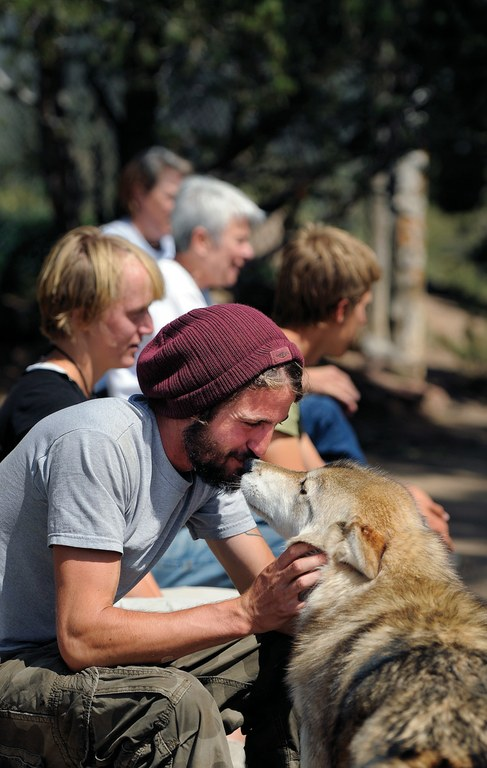 Volunteer Adam Sievering with Abraham, a wolf-dog, at Mission Wolf.