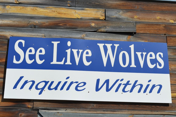 Signs like this one at Wolf People help lure visitors into captive wolf facilities.