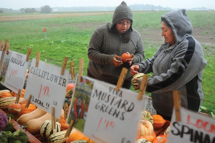 On a cool and rainy day in late September, produce stand manager Lizette Flores and her mother Nelida Martinez prep an incoming shipment of squash and pumpkins.