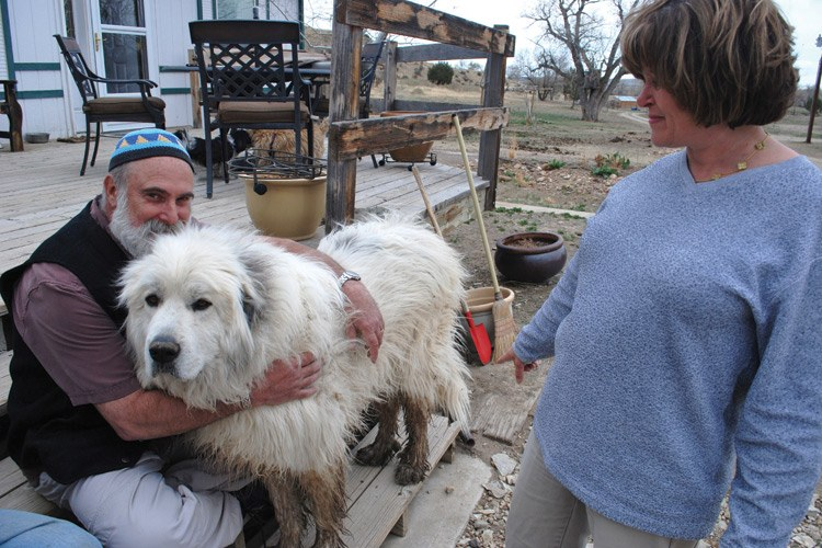 At the end of a busy day, Elisheva Brenner looks on as her husband and partner, Hersh Saunders, hugs Rocky, their Great Pyrenees dog and ranch mascot.