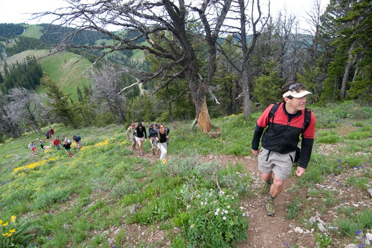 TreeFight founder David Gonzales leads a group up volunteers up Mount Glory in western Wyoming.