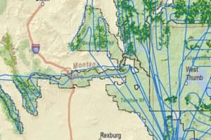The environmentalists' whitebark pine air force